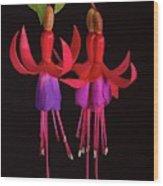 Fused Fuchsia Flower Wood Print