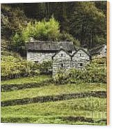 Fusio Vineyard Wood Print