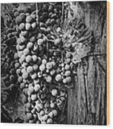 Future Wine Wood Print