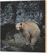 Fv3608, Jason Puddifoot White Spirit Wood Print