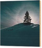 Fv4157, Will Datene Pine Tree On A Hill Wood Print by Will Datene