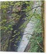 Gainfeld Waterfall In Spring Austria Wood Print
