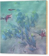 Galapagos Islands From Under Water Wood Print