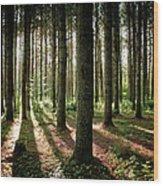 Galarneau Wood Print