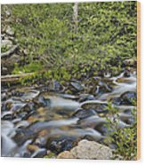 Galena Creek Wood Print