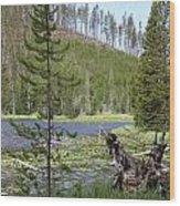 Gallatin River Yellowstone  Wood Print