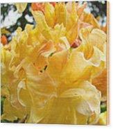 Gallery Fine Art Prints Yellow Orange Rhodies Wood Print