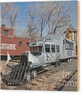 Galloping Goose 7 In The Colorado Railroad Museum Wood Print