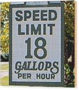 Gallops Per Hour Wood Print