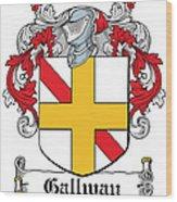 Gallway Coat Of Arms Irish Wood Print