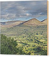 Galty Mountains 1 Wood Print