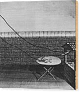 Galvani Galvanism - To License For Professional Use Visit Granger.com Wood Print