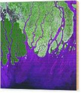 Ganges River Delta Wood Print