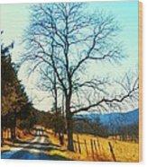 Gap Road Wood Print by Joyce Kimble Smith