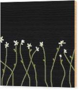 Garden Wood Print by Ann Kipp