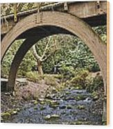 Garden Arch Wood Print