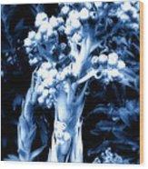 Garden Art Wood Print by Claudette Bujold-Poirier
