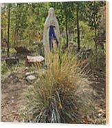 Garden At Mother Cabrini Wood Print