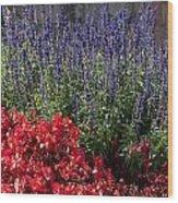 Garden At Yonah Mountain Wood Print
