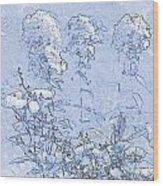 Garden Blue Wood Print by Diana  Tyson