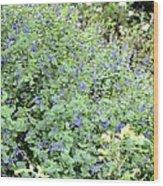 Garden Blues Wood Print