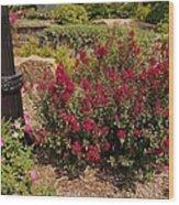 Garden Bush At Woodward Park 2f Wood Print