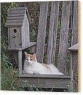 Garden Cat Wood Print