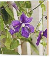 Garden Clematis Wood Print