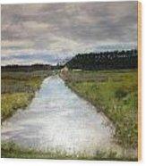 Garden Creek Wood Print