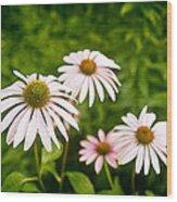 Garden Dasies Wood Print