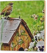 Garden Decor With Song Wood Print