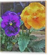 Garden Flowers Poppies Wood Print