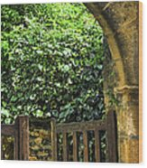 Garden Gate In Sarlat Wood Print by Elena Elisseeva