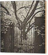Garden Gate Wood Print