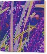 Garden Grass Wood Print