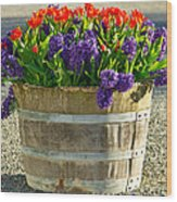Garden In A Bucket Wood Print by Eti Reid