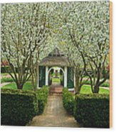 Garden In Full Bloom Wood Print