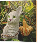 Garden Kitty In The Fall Wood Print