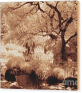 Garden Lily Pond Wood Print