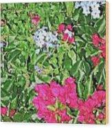 Garden Of Austria Wood Print