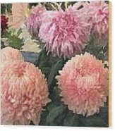 Garden Of Mixed Pink Chrysanthemums Wood Print