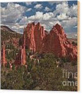 Garden Of The Gods Afternoon Wood Print