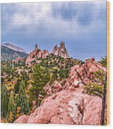 Garden Of The Gods Wood Print by Sergio Aguayo
