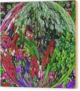 Garden Orb Wood Print