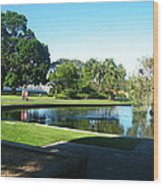 Sydney Botanical Garden Lake Wood Print
