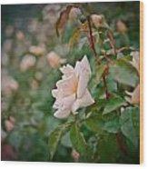 Garden Pride Wood Print