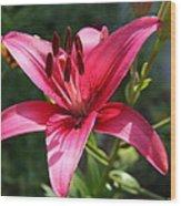 Garden Queen Wood Print