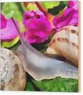 Garden Snails Wood Print