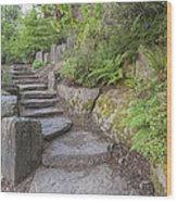 Garden Stair Steps With Natural Rocks Wood Print