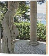 Garden Statue I Wood Print
